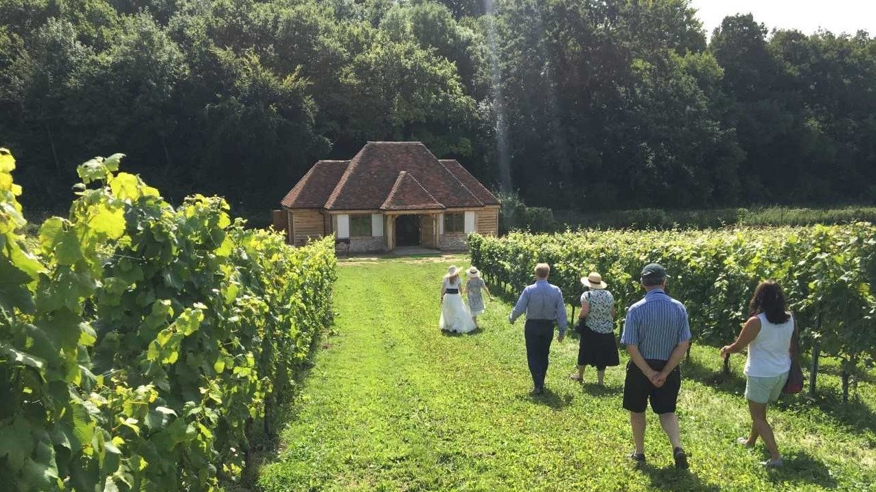 A vineyard experience at the Wiston Estate.jpg